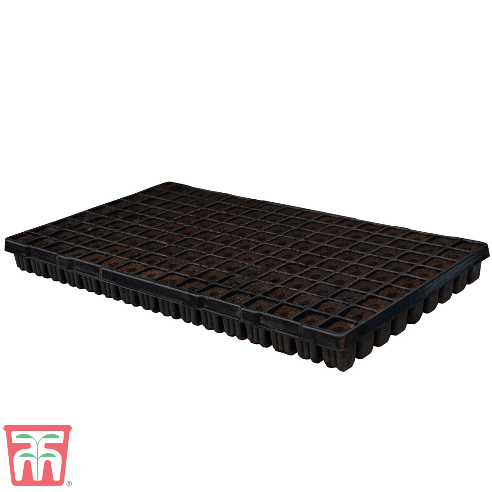 Image of 144 Cell Black Plastic Seed Tray