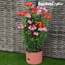 garden grow self watering jumbo tower planter