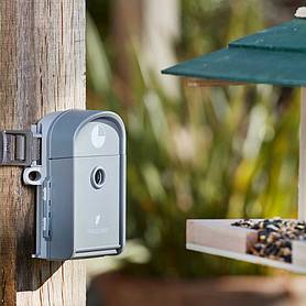 Wingscapes 8 Megapixel Time-Lapse Waterproof Wildlife Nature Camera