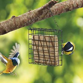 Nature's Market Suet Cake Bird Feeder