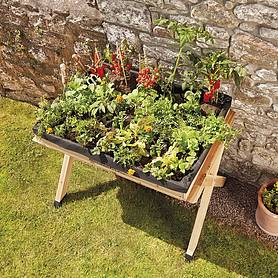 garden grow raised large wooden planter with  worth of veg seed