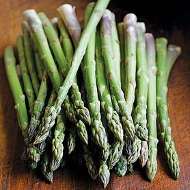 Asparagus officinalis 'Ariane' (Seeds)