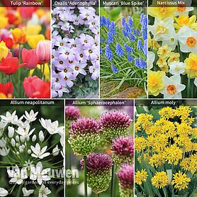 Spring Spectacular Colour Collection