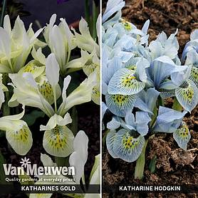 Iris Katharine's Collection