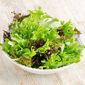 Lettuce 'Leaves Mixed' (Seeds)