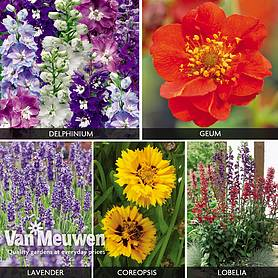 Perennial Cottage Mix