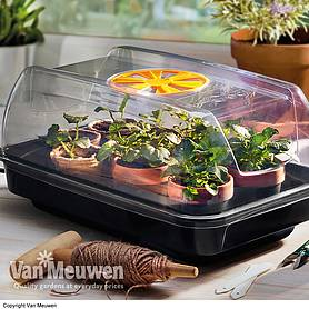 Electric Heated Propagator with Air Valve Vent