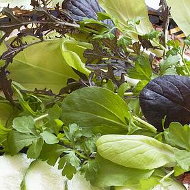 Salad Leaves 'French Mix' (Seeds)