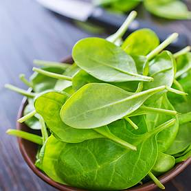 Spinach 'Amazon' (Seeds)