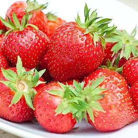 Strawberry 'Sweet Sensation'