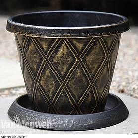 Stylish Patio Pot