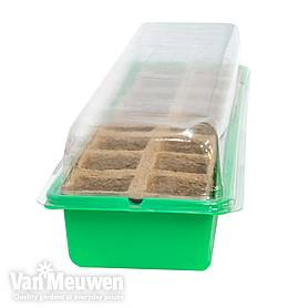 16 Cell Window Propagator