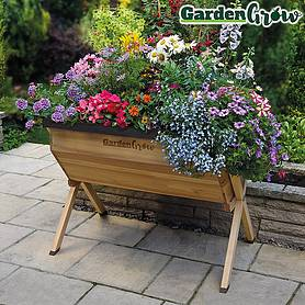 Garden Grow Medium Wooden Planter with £20 worth of veg seed