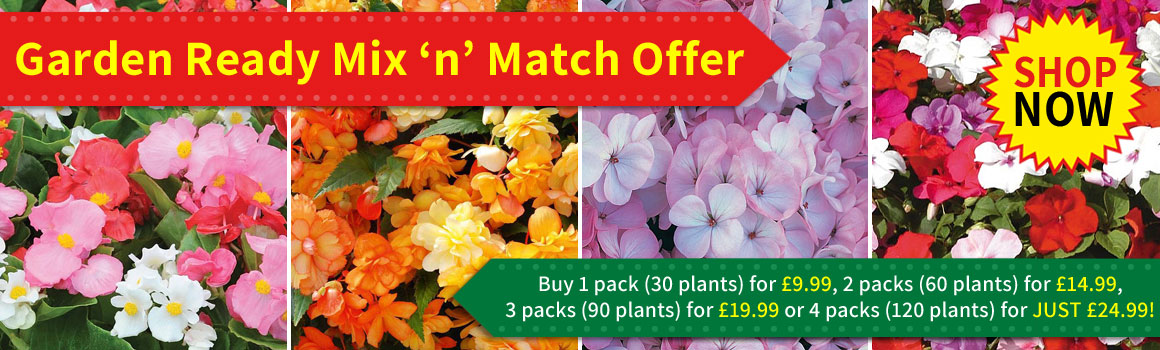 Garden Ready Mix 'n' Match offer