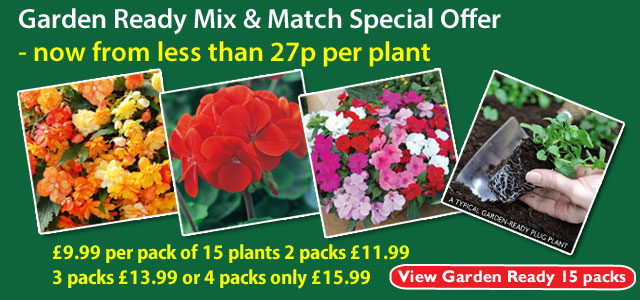 Great savings on packs of 15 garden ready plants in our Mix and Match offer - plants from less than 27p each
