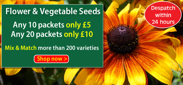 Van Meuwen Seeds Clearance Sale - Prices reduced PLUS 10 packets for just £5
