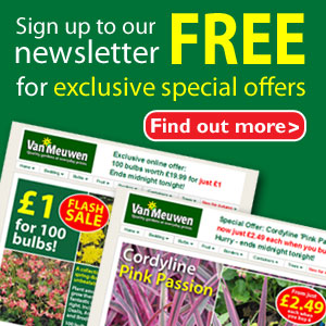 Sign up to our free newsletter for exclusive special offers