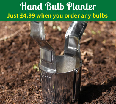 Hand Bulb Planter - Just £4.99 when you order any bulbs