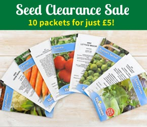 Van Meuwen Flower and Vegetable seeds - 10 packets for just £5