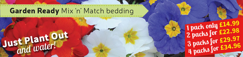 Garden-ready Winter Bedding