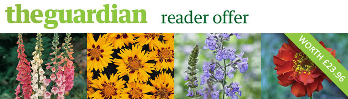 Guardian Perennials Offer