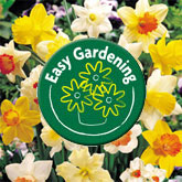 Easy Gardening with Van Meuwen