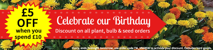 Celebrate our Birthday with £5 OFF when you spend £10!