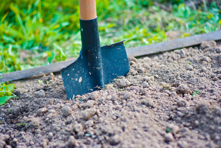 how deep should you dig for your bulbs?