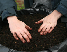 Firming compost in a hanging basket