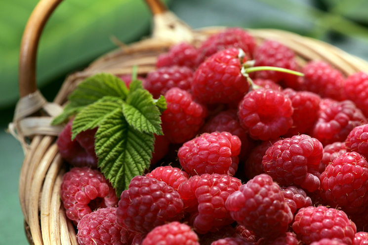 raspberries in a wicker basket