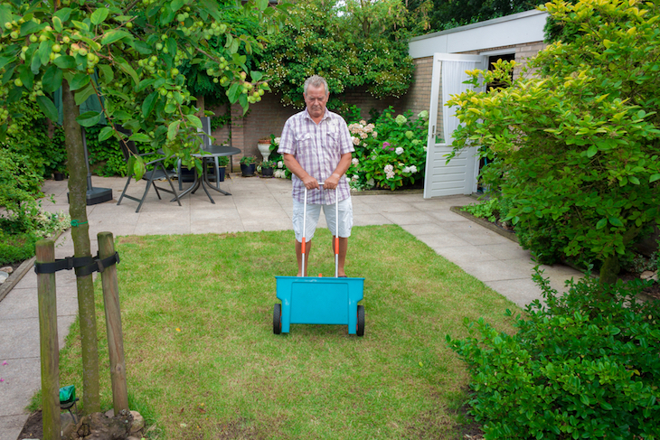 man broadcasting fertiliser on lawn