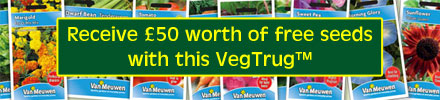 Receive £50 worth of FREE vegetable seeds with this VegTrug™