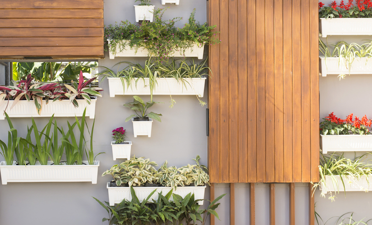 wall-mounted planters